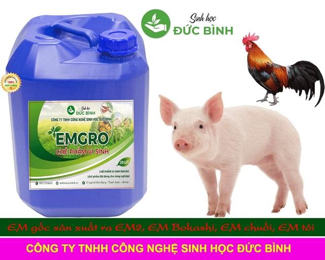 Công ty TNHH Đức Bình luôn đi tiên phong trong chế phẩm sinh học