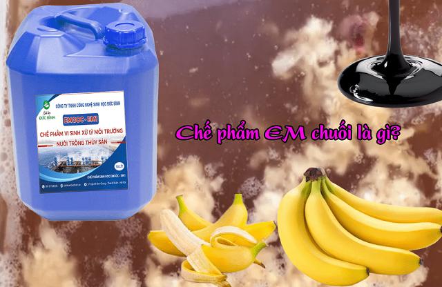 Chế phẩm EM chuối được pha từ EM2 trộn thêm chuối chín