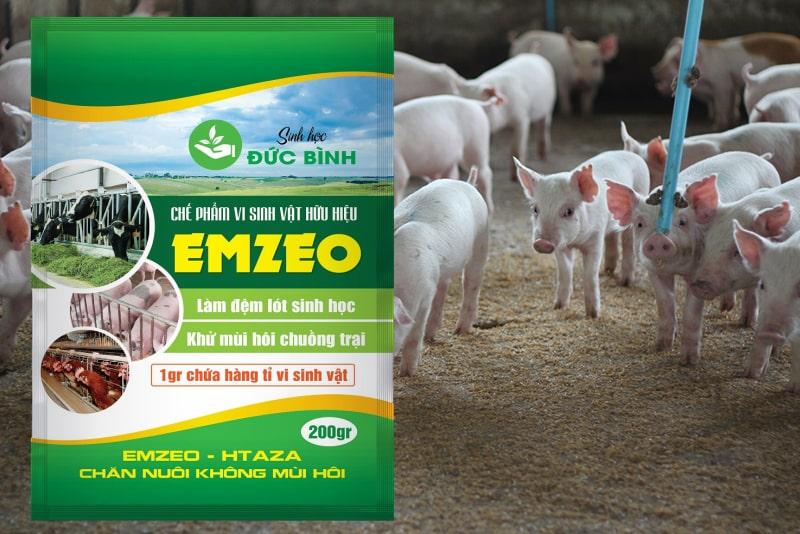 Men vi sinh làm đệm lót sinh học nuôi lợn tốt nhất hiện nay